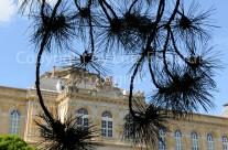 Das Herzogliche Museum am Stadtpark