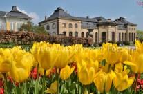 Gothaer Orangerie